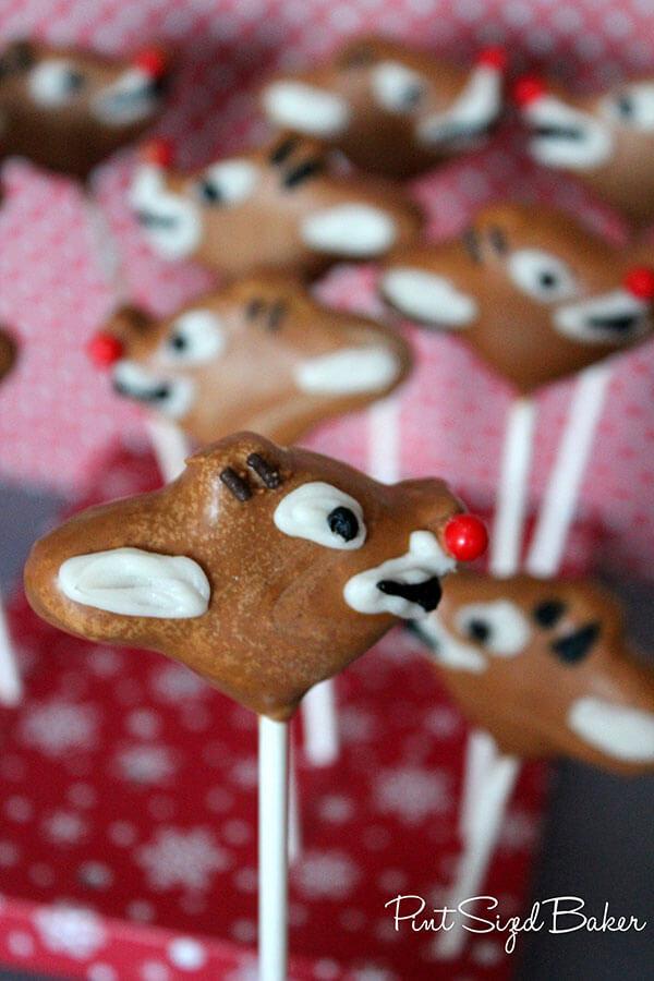 PS Reindeer Review (25)