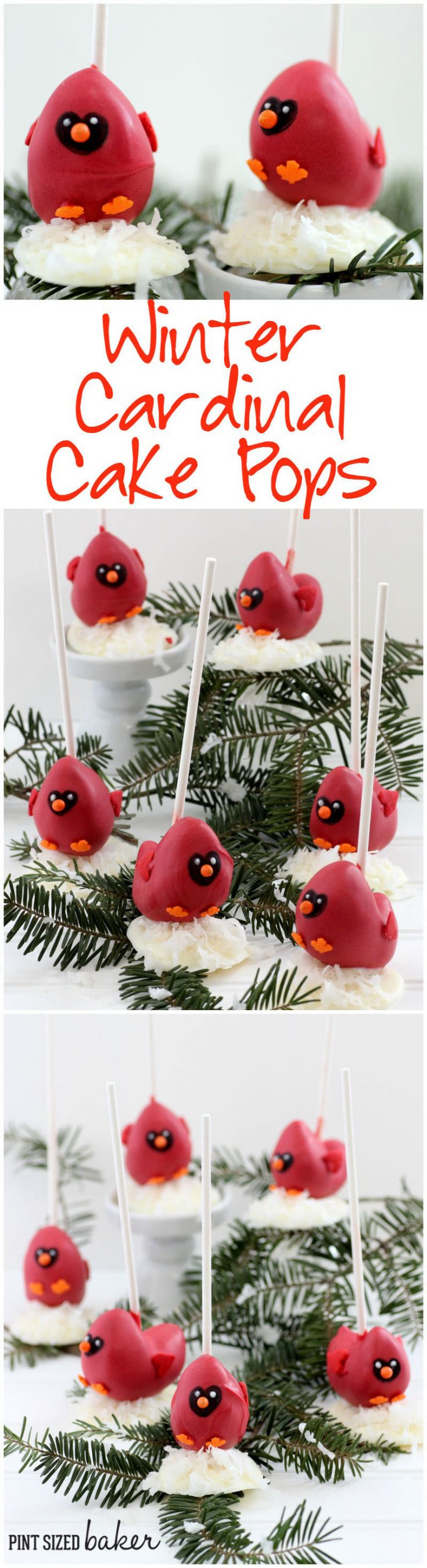 You'll love the step by step instructions on how to make this Cardinal Cake Pops Tutorial.