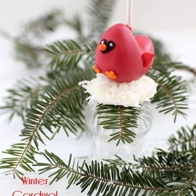 Cardinal Cake Pop Tutorial