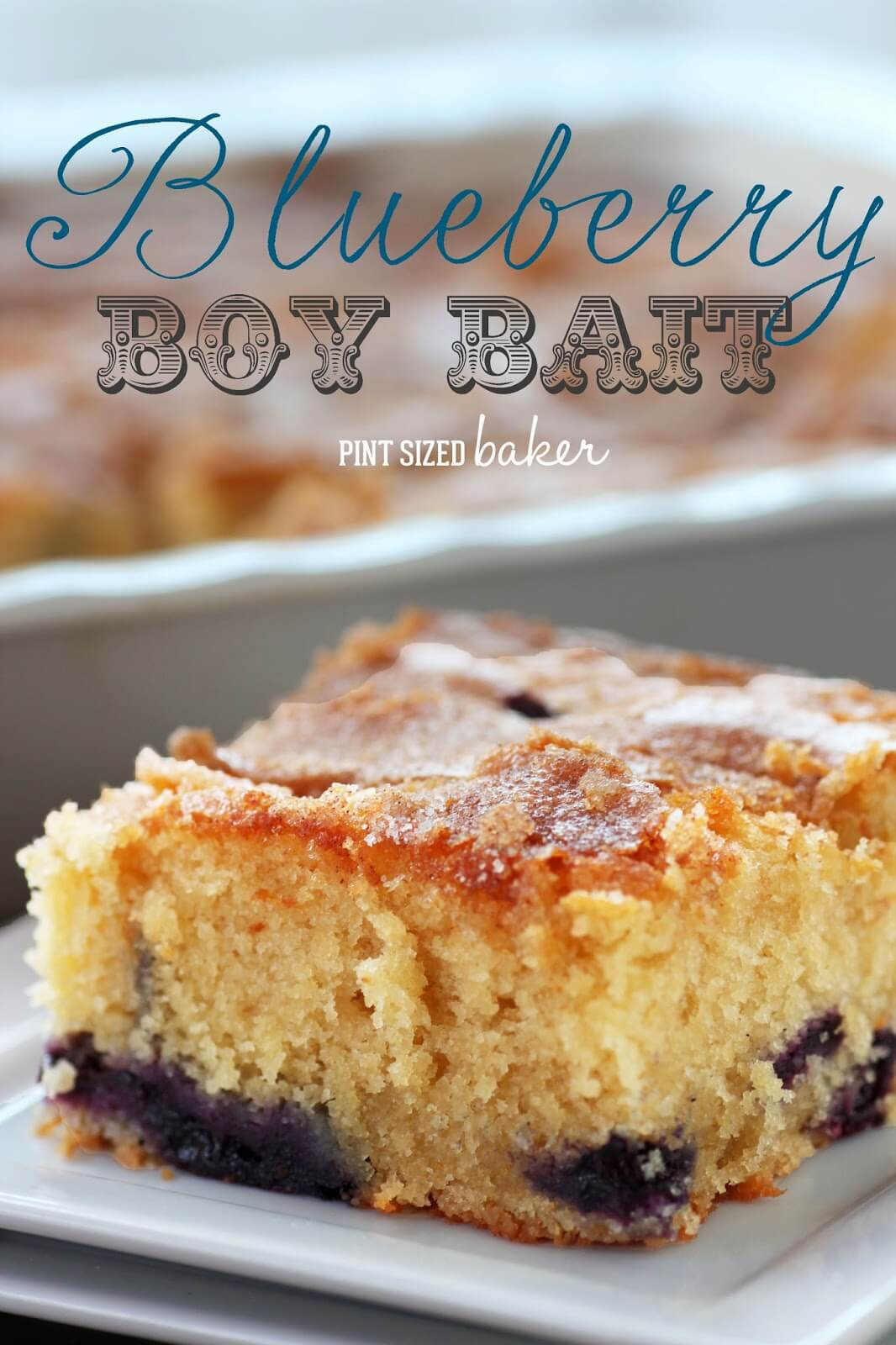 Blueberry Boy Bait and a Virtual Baby Shower