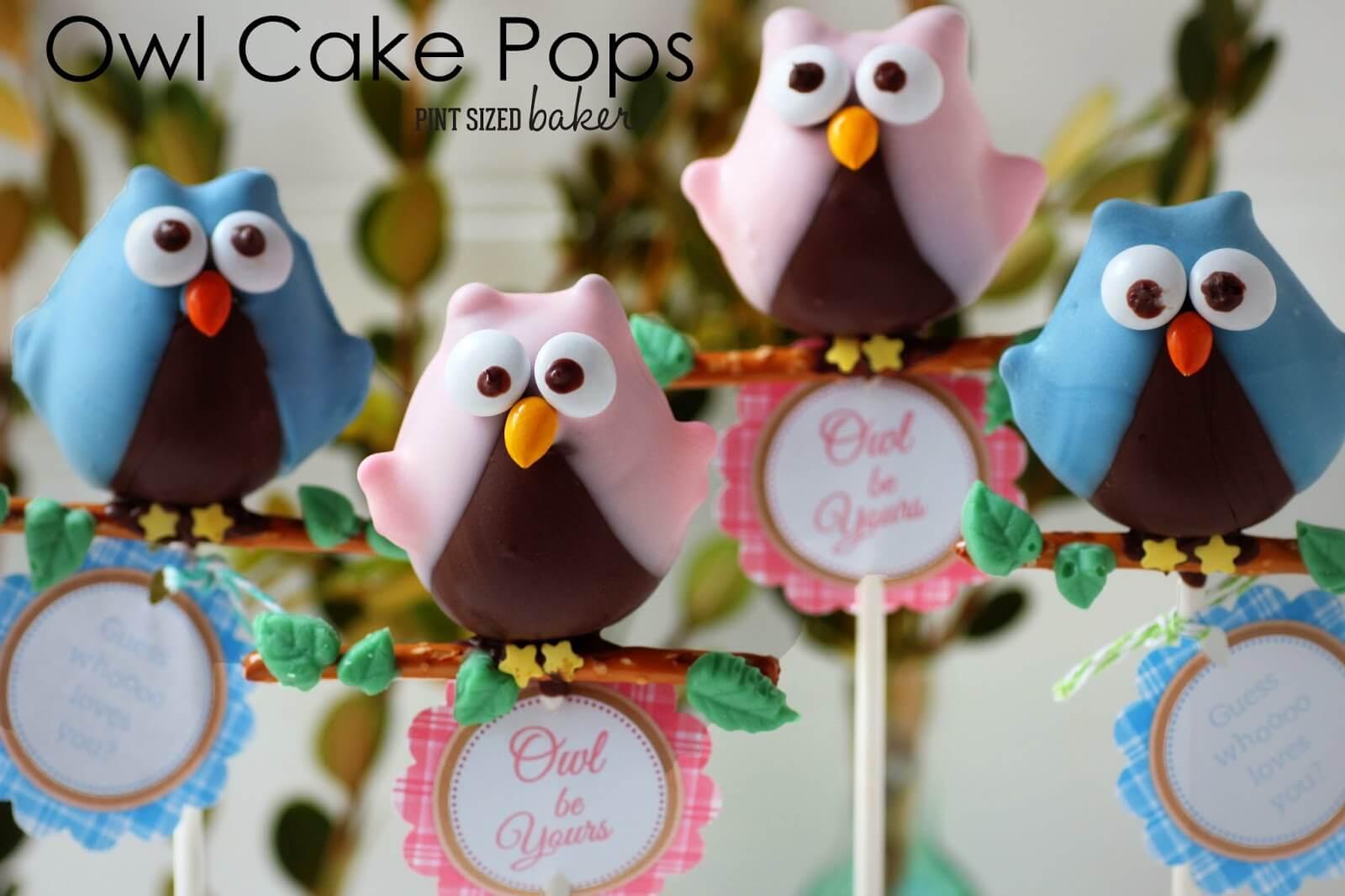 Owl Love You Cake Pops