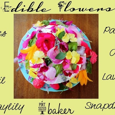 Edible Organic Flowers Cake