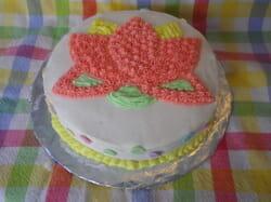 Wilton Cake Decorating Class