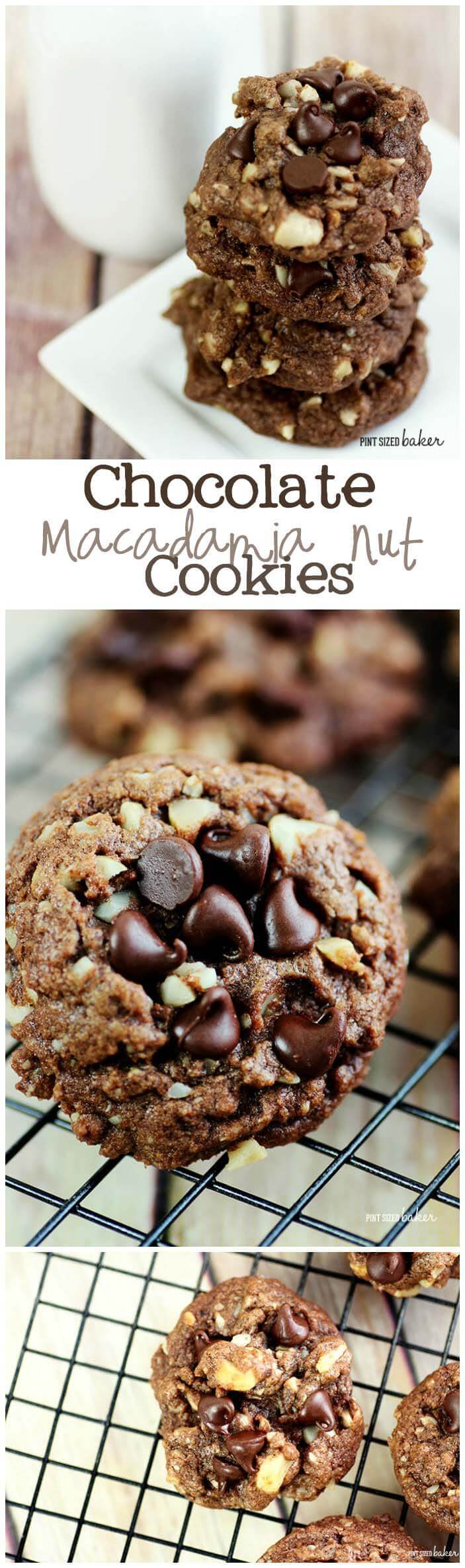 Chocolate Macadamia Nut Cookies are perfect for your chocolate cravings! I keep them frozen and then enjoy a few whenever I want.