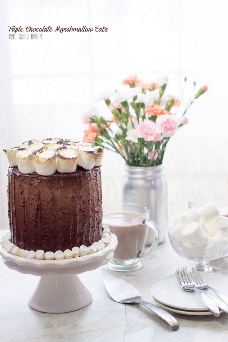This Triple Chocolate Marshmallow Cake is full of great milk chocolate flavor with fun toasted marshmallows on top. It was a winner for dessert!