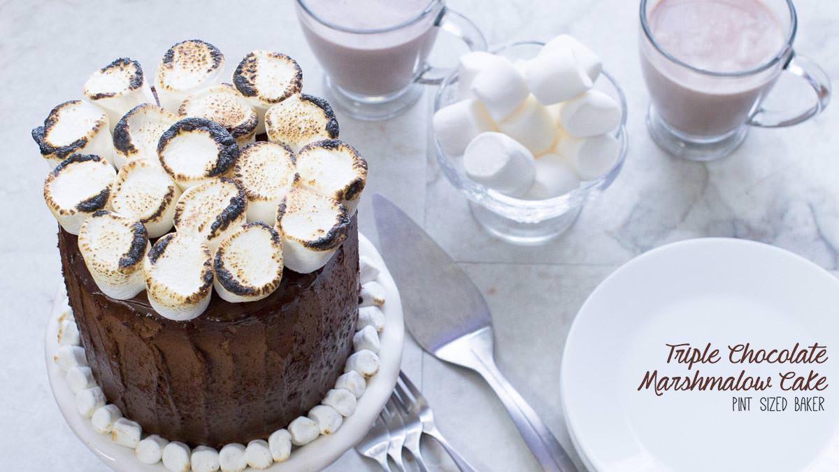 Triple Chocolate Cake Pint Sized Baker