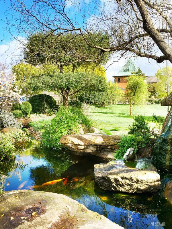 When visiting Peju Winery in Napa Valley, but sure to check out the koi pond and statue gardens. Relax with a glass a wine.