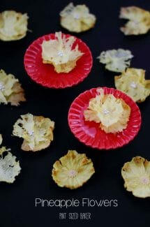 Love these easy dehydrated pineapple flowers. I'm going to add them to a Hummingbird Cake.
