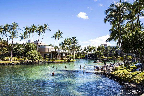 Big Island 2