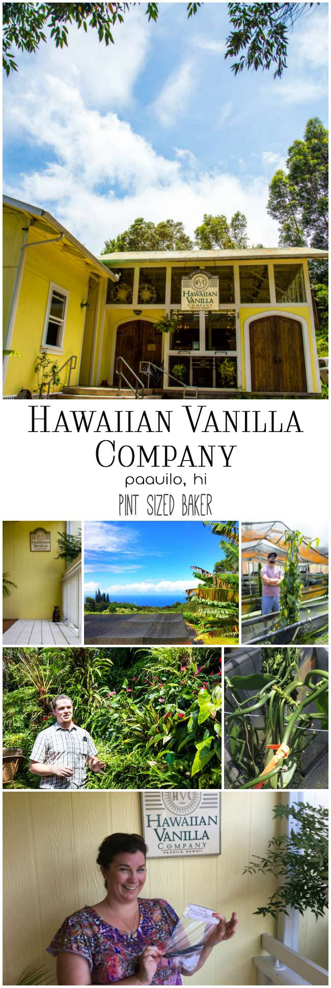 Take a drive over to Honokaa and head up the mountain to see the only Vanilla Company in the United States. Enjoy lunch and take a tour of the Hawaiian Vanilla Company.