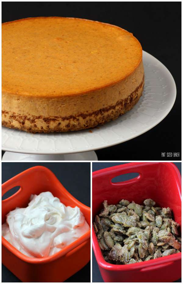 A basic Pumpkin Cheesecake is turned into something amazing when you add some whipped cream and sugared pepitas.