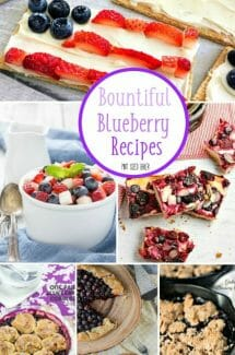 Fresh blueberries are my favorite! Here's 10 Bountiful Blueberry Recipes for your summer desserts!