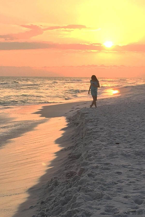 Search for seashells and sand dollars along the Panama City Beaches. The sunsets are stunning all along the Florida Panhandle.