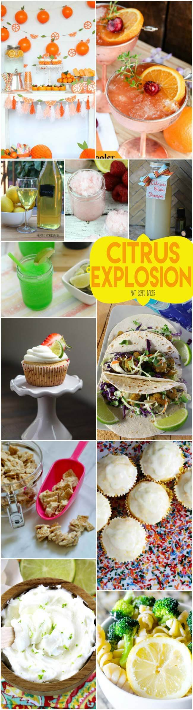 It's a Citrus Explosion - Recipes and DIY projects that are brimming with lemons, limes and oranges. The recipes taste great and the crafts smell wonderful!