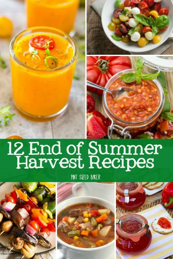 12 End of Summer Harvest Recipes that you can make to use up your tomatoes, zucchini, basil, squash, and more.