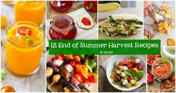 12 End of Summer Harvest Recipes that you can make to use up your tomatoes, zucchini, basil, squash, and more. Get in the kitchen with your seasonal veggies and make a great dish for your hungry family.
