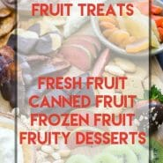 Here's a collection of Fruit Treat Recipes for cakes, cookies, pies, frozen treats and so much more. Because Fruity Desserts are simply the best.