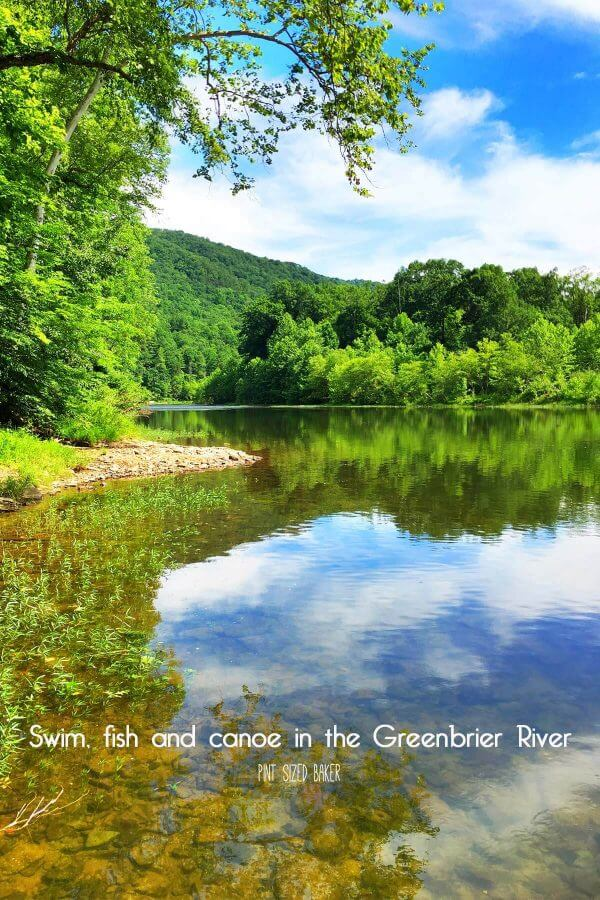 The beautiful Greenbrier River flows through Greenbrier County, WV and down to New River Gulch. It's one of the cleanest rivers in the US!