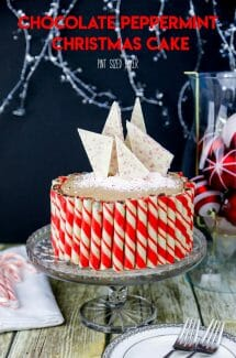 Chocolate Peppermint Christmas Cake
