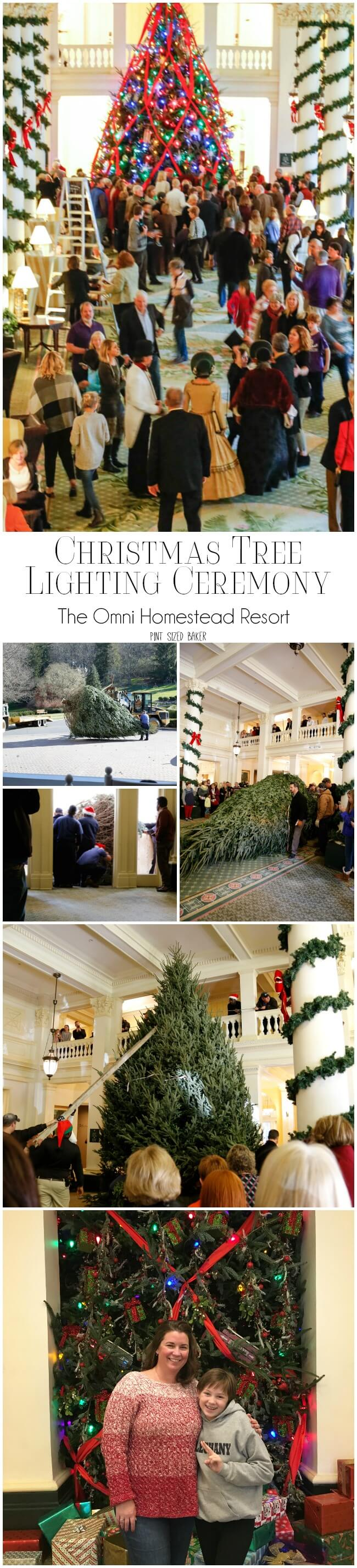 Get away to The Omni Homestead resort for an amazing vacation over the Christmas Holidays! Visit the week before Thanksgiving until the week after New Year's to experience their Christmas Activities.