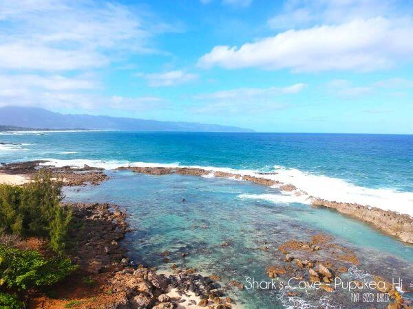 Shark's Cove on the North Shore is great for snorkeling when the water is calm. There's lots of sea life to check out and enjoy. Droning over Oahu