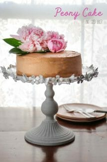 Pick some fresh peonies from your garden or buy them from the store to dress up a basic cake and turn it into a beautiful peony cake for your next party.