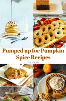 Get Pumped up for Pumpkin Spice Recipes! I've got 15 amzing Pumpkin Spice Recipes for breakfast, snack, and dessert! Get you Pumpkin Spice loving ON!