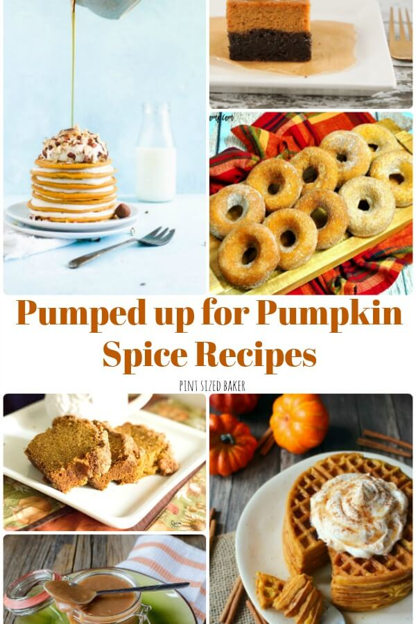 Get Pumped up for Pumpkin Spice Recipes! I've got 15 amzing Pumpkin Spice Recipes for breakfast, snack, and dessert! Get you Pumpkin Spice loving ON!