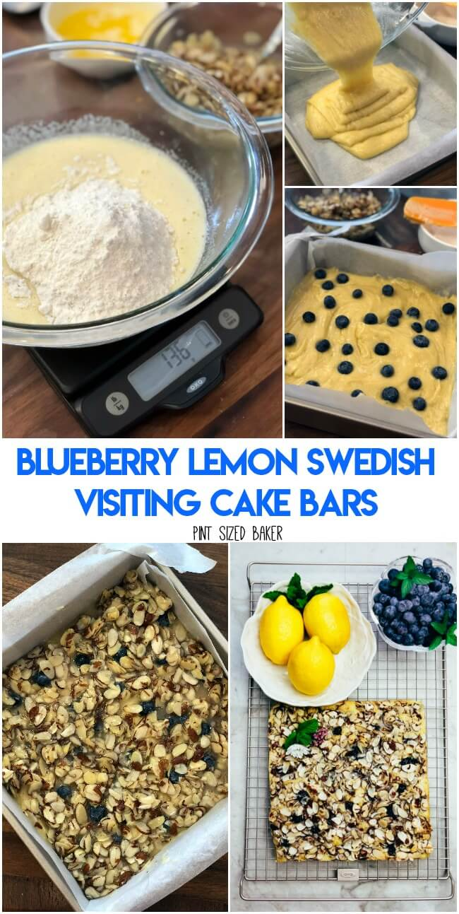Blueberry Lemon Swedish Visiting Cake Recipe sponsored by OXO,