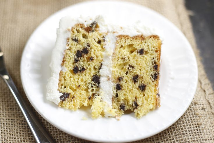 Easy Chocolate Chip Cake Recipe
