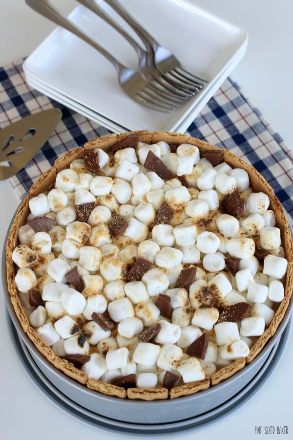Toasted marshmallows and chunks of chocolate finish off the top layer of a S'mores Ice Cream Cake.