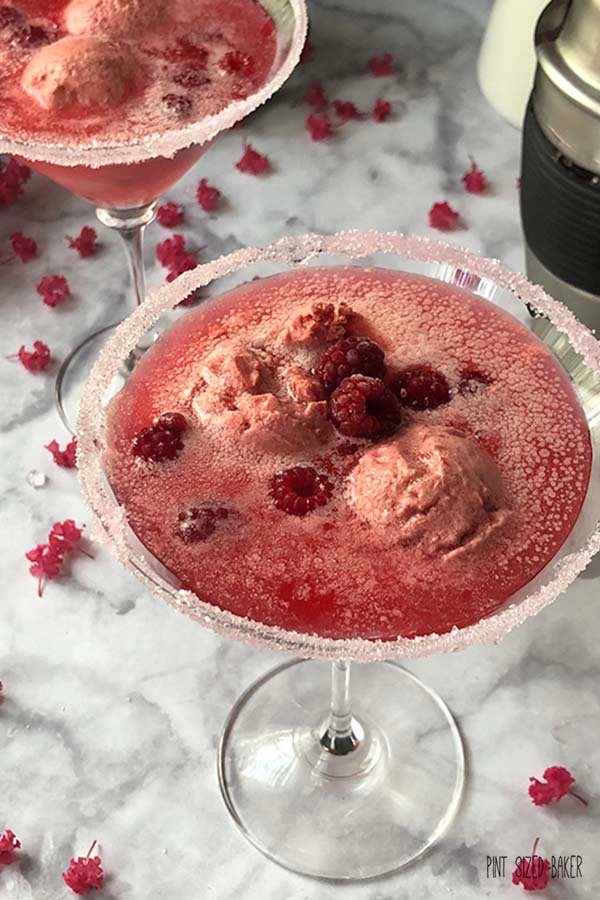 Wineberry sorbet in a martini glass.