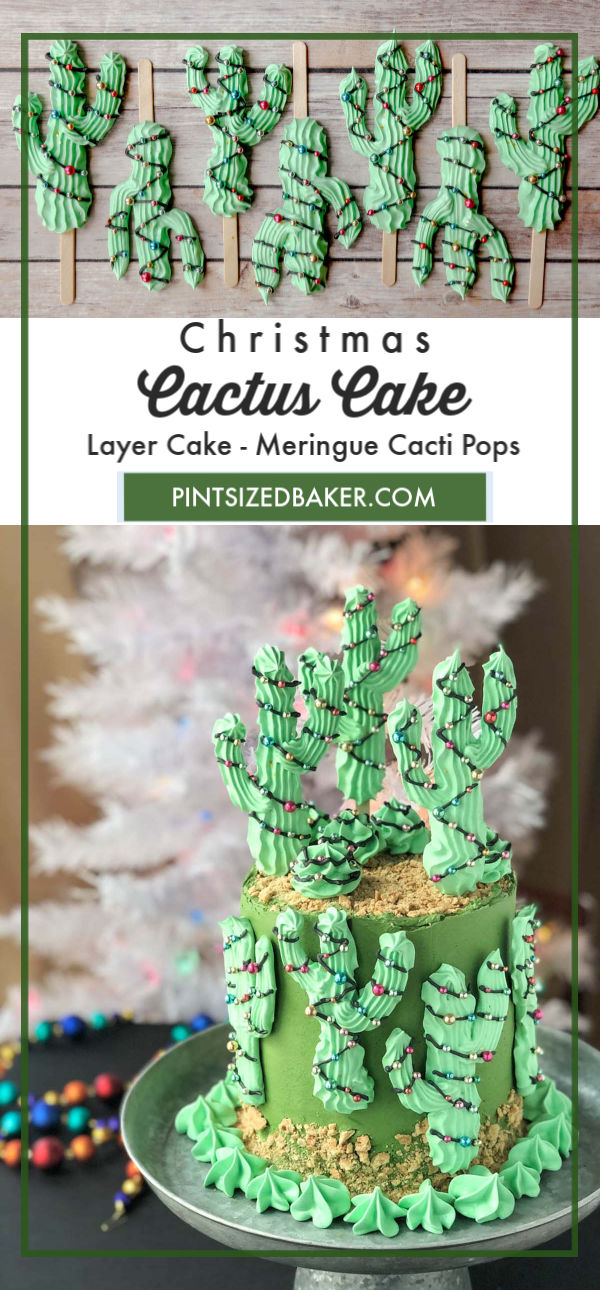 There's nothing more adorable than a decorated Saguaro Cactus decorated in a Christmas Garland! This Cacti Cake will the be talk of the party!