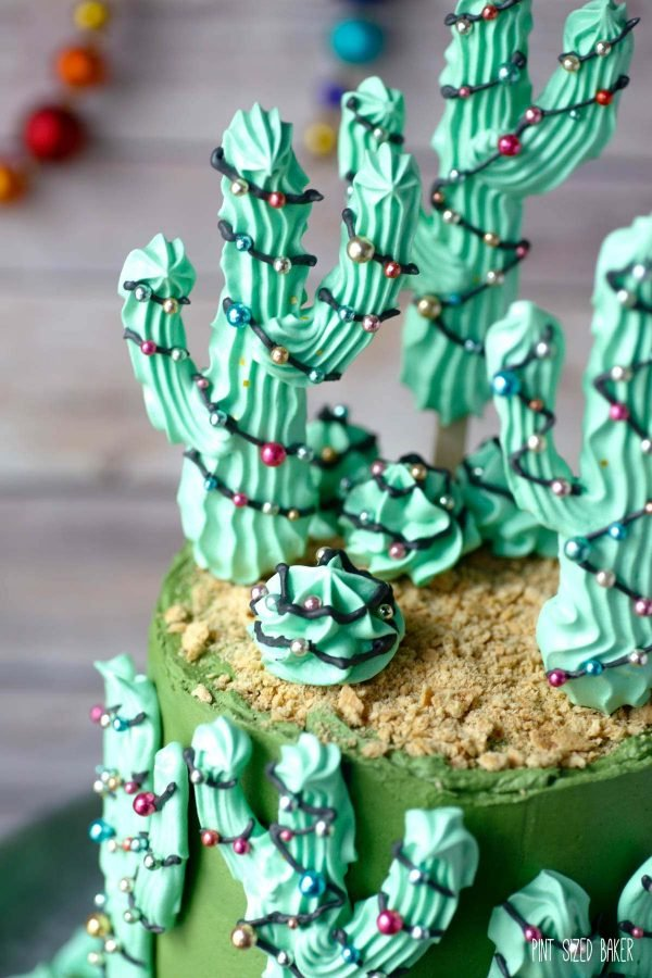 A close up view of the Christmas Cactus Cake with the graham cracker topping and ragged edge.