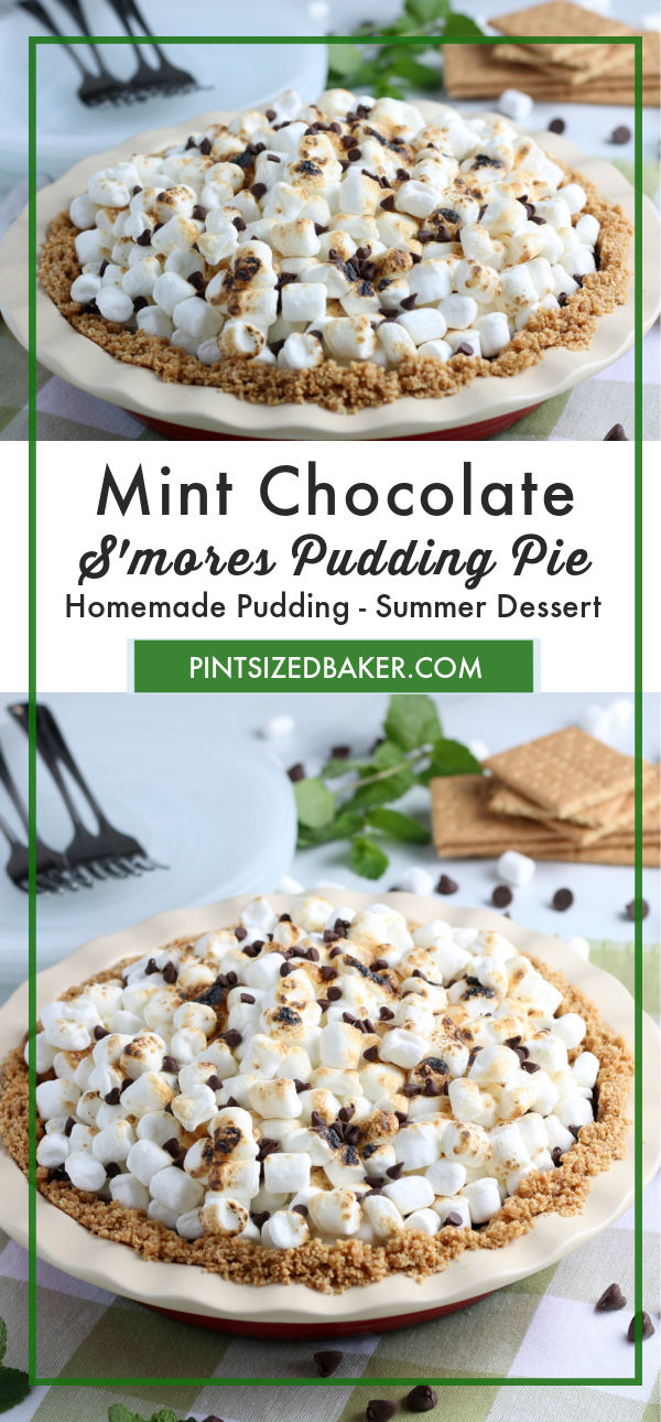 Love s'mores on a summer night? Then you're going to love this Mint Chocolate S'mores Pie with just a few store bought ingredients, it's sure to please the family.