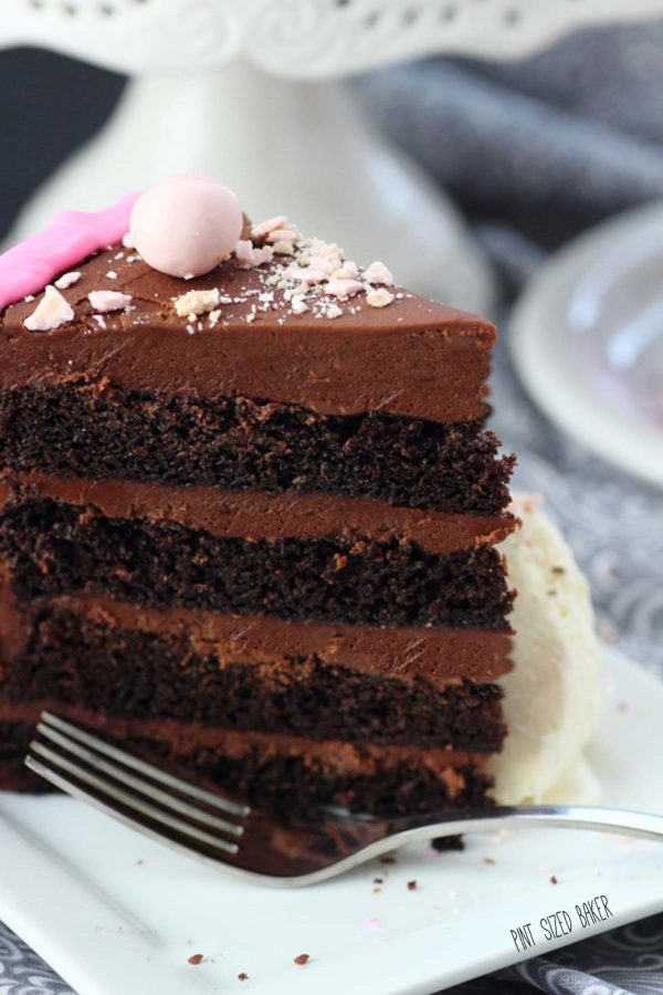 detailed image of the 4 layers of chocolate cake and chocolate frosting.