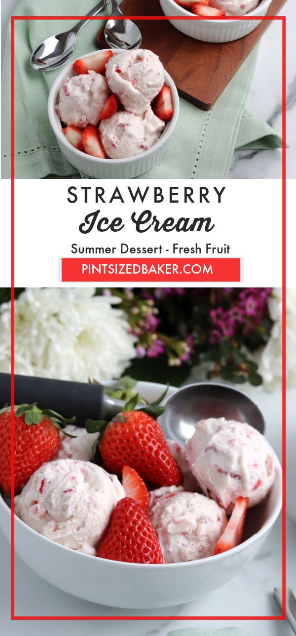 Make a cold treat for yourself and the family with this flavorful Homemade Strawberry Ice Cream recipe. It is easy to make and far better than the ice cream options available at the store because of its fresh taste.