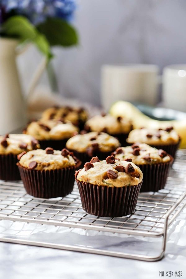 Detailed image of the muffins with chocolate chips on top.